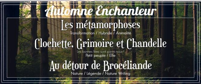 automne enchanteur (2)